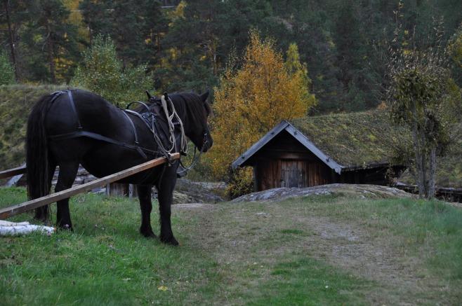 Veakjøring De Heibergske Samlinger- Sogn Folkemuseum